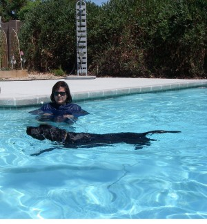 Pet swim safety