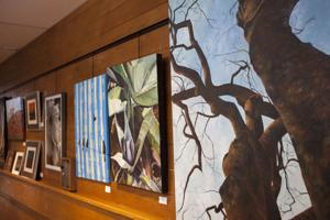 TUHSD Art Show