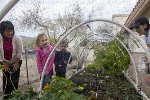 Garden at Children of Hope