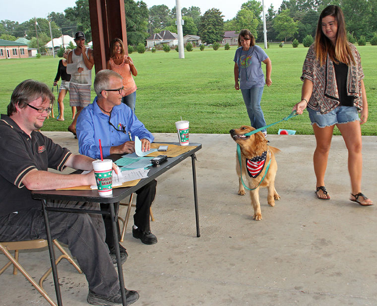 Bark in the Park 10