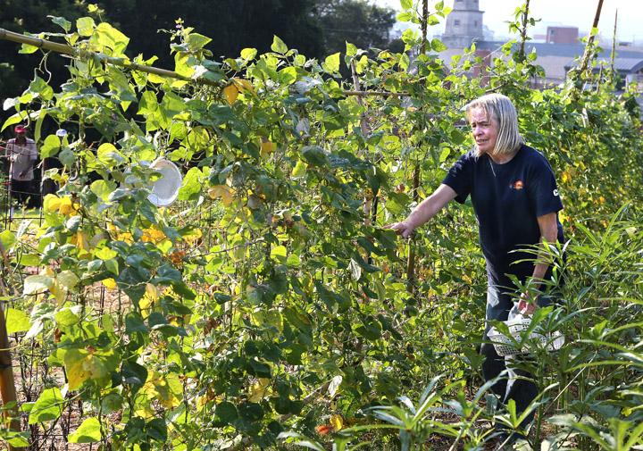 Interfaith community garden