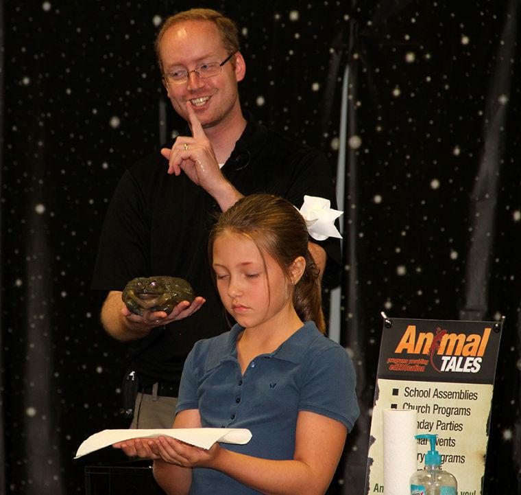 Animal Tales 16/36