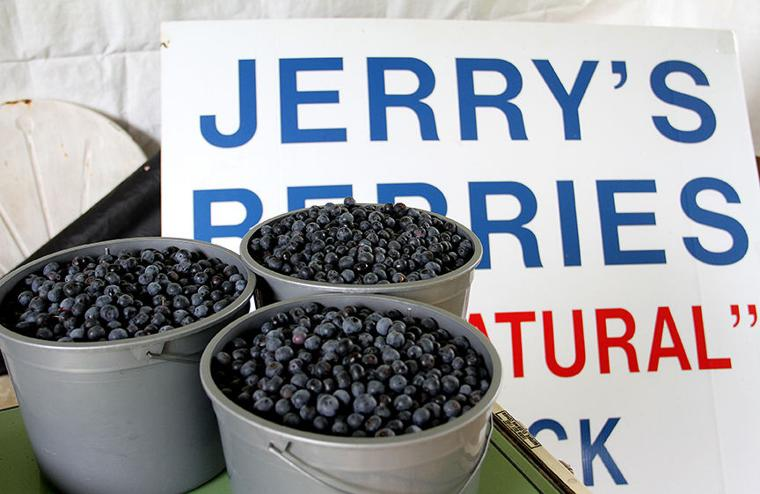 Pickin' for a cause at Jerry's Berries 8