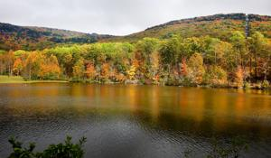 <p>Fall color at Lake Cheaha inside Cheaha State Park. Photo by Stephen Gross / The Anniston Star.</p>