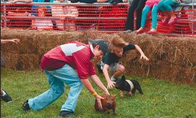 Cleburne County Fair Saturday
