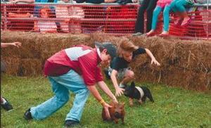 Cleburne County Fair Saturday