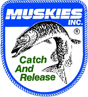 Welcome to the Twin Cities Chapter of Muskies, Inc. | Twin Cites ...