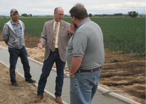 Onion growers lobby against FDA rule