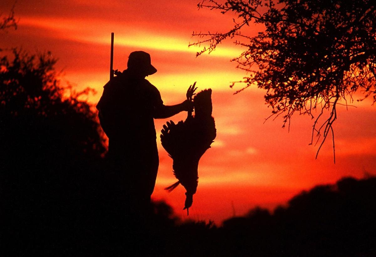 2015 16 hunting fishing licenses on sale aug 15 sports for Buy texas fishing license online
