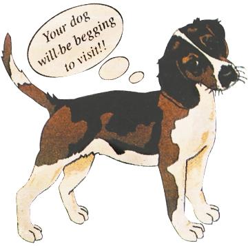 cady s kennels dog boarding amp daycare auburn ny