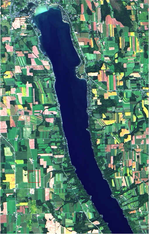 Owasco Lake from space