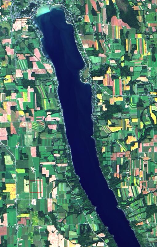 Owasco Lake from space