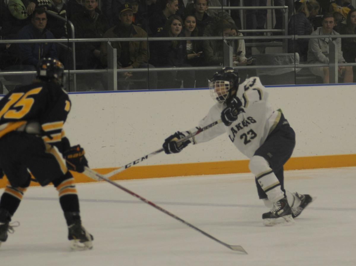 skaneateles ymca community center to host college hockey match skaneateles ymca community center to host college hockey match up at allyn arena