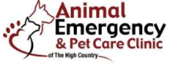 emergency vet open sunday pets world
