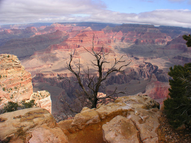 The 10 Best Grand Canyon National Park Tours, Excursions ...
