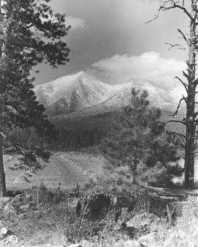 Throwback Thursday: Snow on the peaks