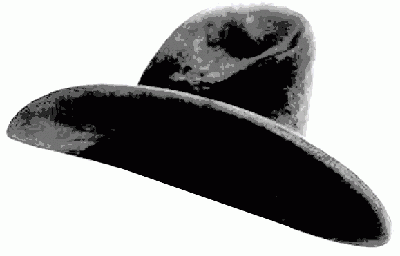 stephen knutson