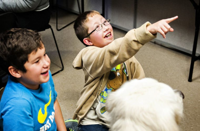 Trained dog provides autism research, companionship