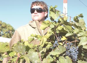 Jackson Winery receives $300,000 USDA rural  development grant