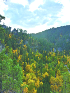 Fall colors draw tourists to Spearfish Canyon