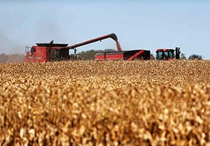 Farm Bill pushed to 2014
