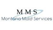 Montana Mold Services