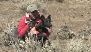 Feature video and photos: Search and rescue dogs have a nose for finding the lost