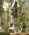 Montana's downhill bike parks open in June