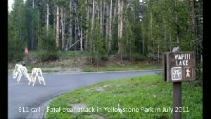 Yellowstone bear mauling 911 call