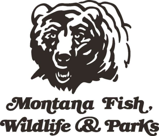 Montana fish wildlife and parks officials to update goals for Mt fish wildlife and parks