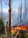 Fire burns a hillside east of Magruder Saddle