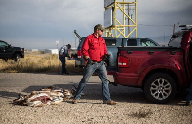 Five men arrested for allegedly poaching antelope outside for Wyo game and fish