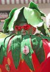 Strawberry Festival mascot