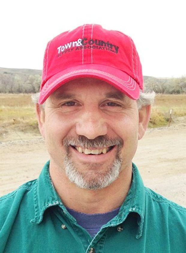 Randy Bauwens : Business