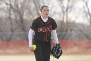 Prep softball: Capsule previews