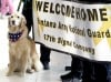 Therapy dog on hand for returning troops