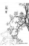 Karlo Fujiwara artwork -- cherry blossoms