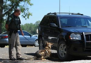 MHP gets 1st class of drug-detection dogs to fight 'growing' drug problem