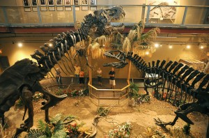 Dinosaur museum presents biblical view of origins