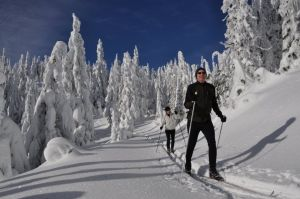 Some answers to Nordic skiing questions you may have