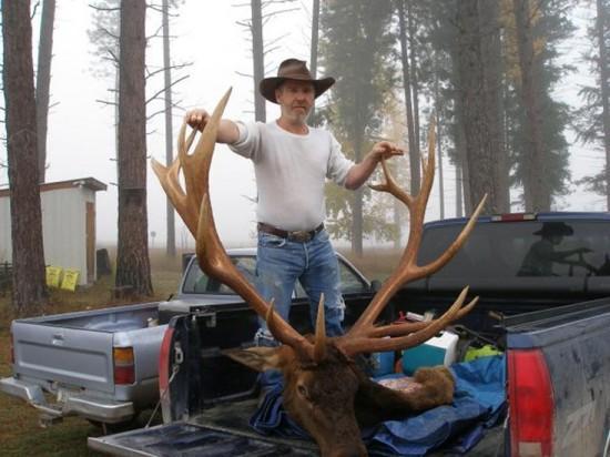 Elk 577 Second Llc future of elk management