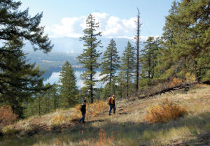 Star Peak: Lookout sits atop proposed wilderness