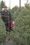 Elgin Robison and his daughter, Brooklyn, 2, pick out a tree