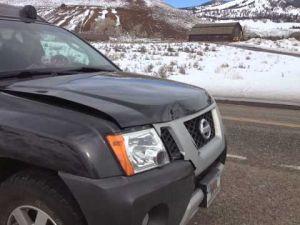 Damage from bison ramming car