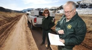 Forest revives road project into Pryor Mountains