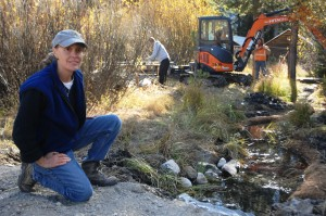 Small stream being restored for Yellowstone cutthroat spawning