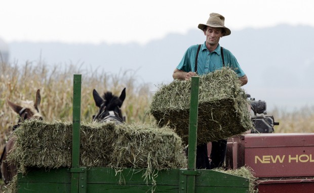 5 free things to do in pennsylvania amish country for Amish country things to do