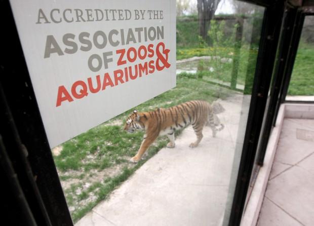 ZooMontana loses AZA accreditation | Billings News ...