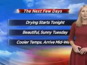 Ideal barbecue weather expected for Labor Day