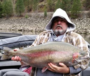 Monster rainbow trout misses chance for Idaho record book